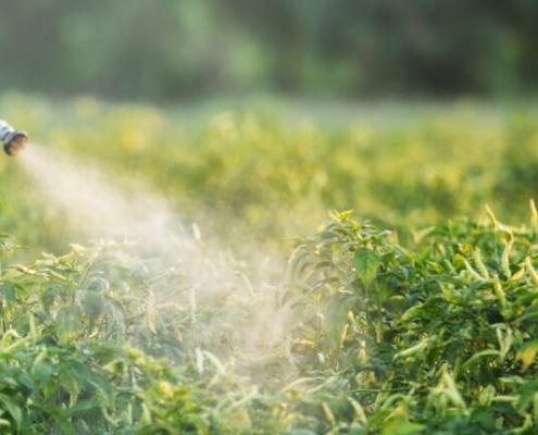 fabricación de fitosanitarios / manufacture of phytosanitary products