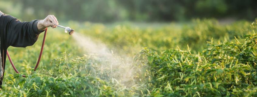 fabricación de fitosanitarios
